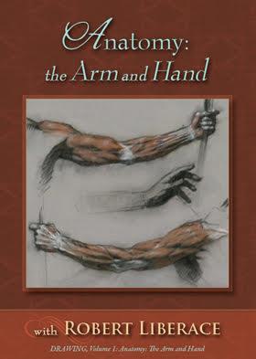 Anatomy: The Arm and Hand